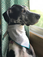 Load image into Gallery viewer, Grey Fleck Dog Bandana