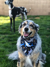 Load image into Gallery viewer, Fins Up Shark Dog Bandana