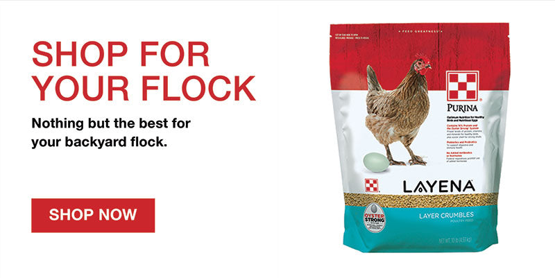 Flock Products