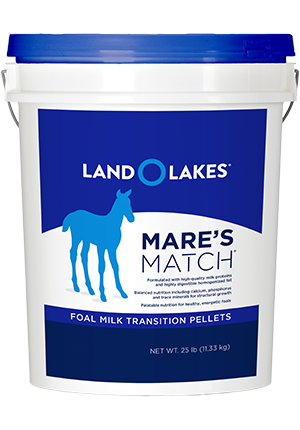 LAND O LAKES® Mare's Match Foal Milk Transition Pellets 25 lb pail