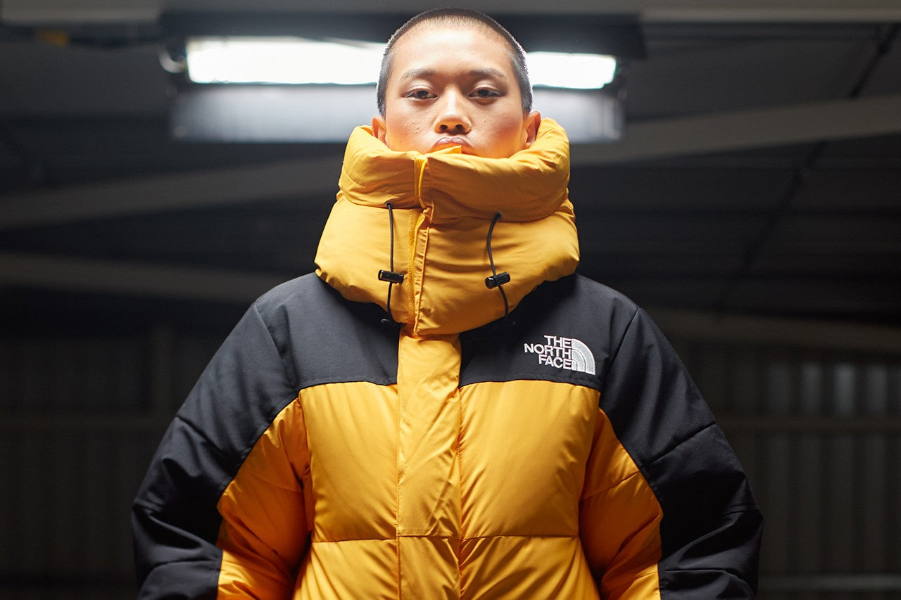 Shop The North Face NZ