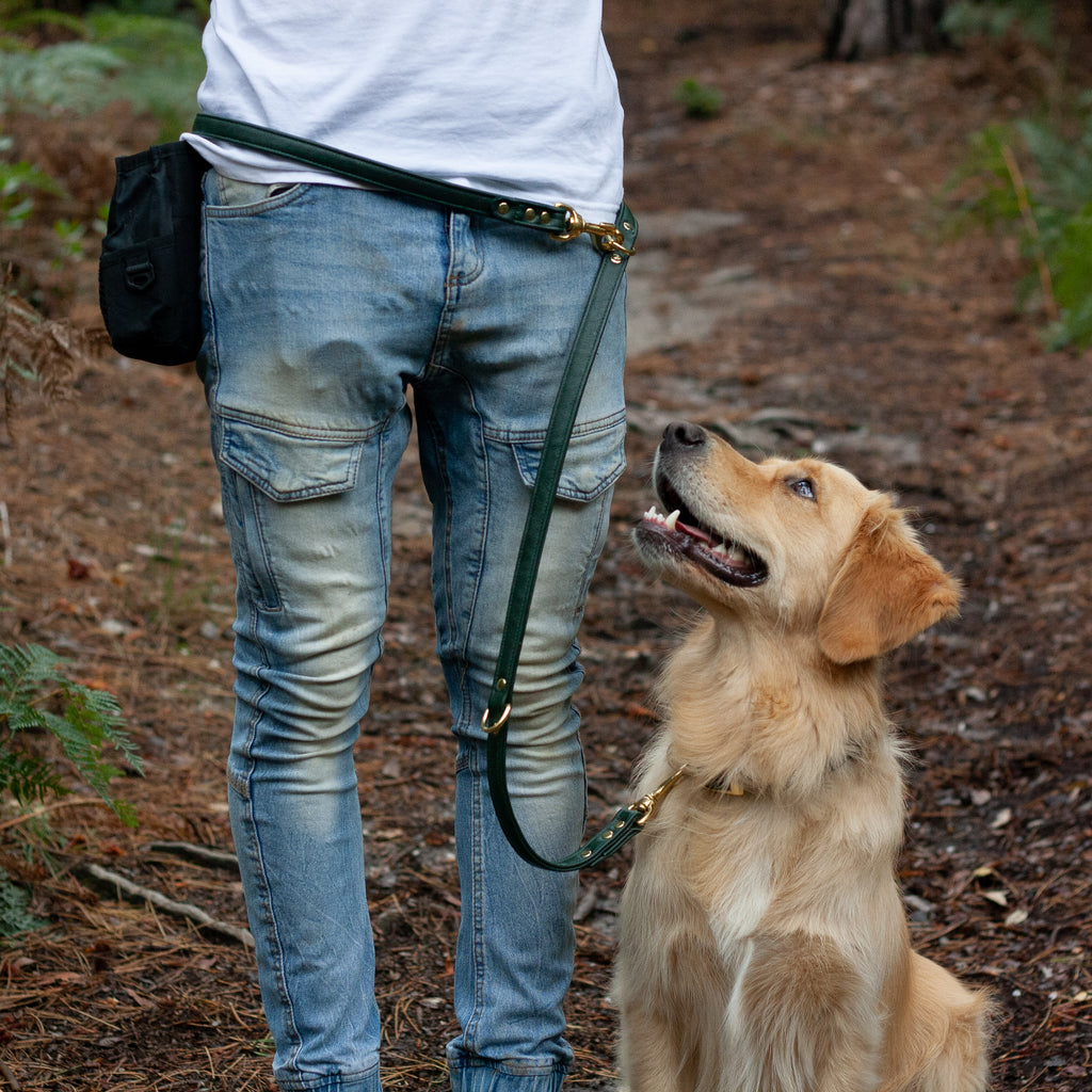 Premium Leather Multi Function Leash