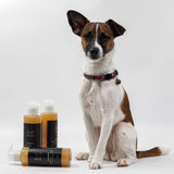 Dog Shampoo | Manuka Honey