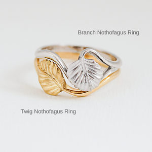 Twig Nothofagus Ring (18K)