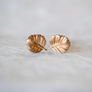 Nothofagus Stud Earrings