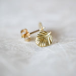 Nothofagus Stud Earrings (18K)