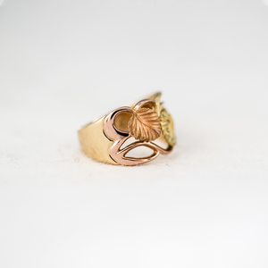 Nothofagus Intertwined Ring (18K)