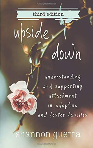 Upside Down by Shannon Guerra