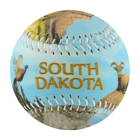 South Dakota Baseball - B-SDKAH