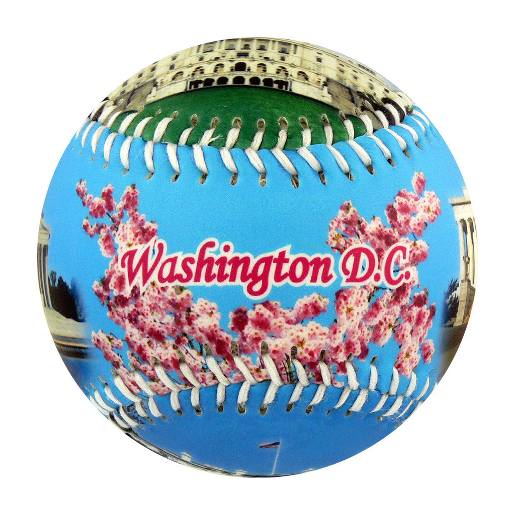 Washington DC Baseball - B-WASHH