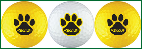 Rescue Paw Yellow Variety - RPAW