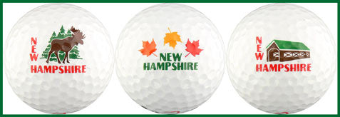 New Hampshire w/ Moose & Bridge - NEWH