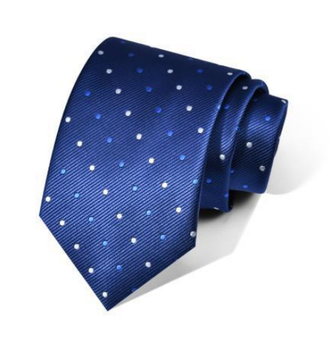 "Zegami Men Tie ""Navy Blue Polka Dots"""
