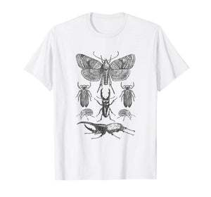 Insect Bug Collection Shirt Moth Stag Beetle Cicada T-Shirt