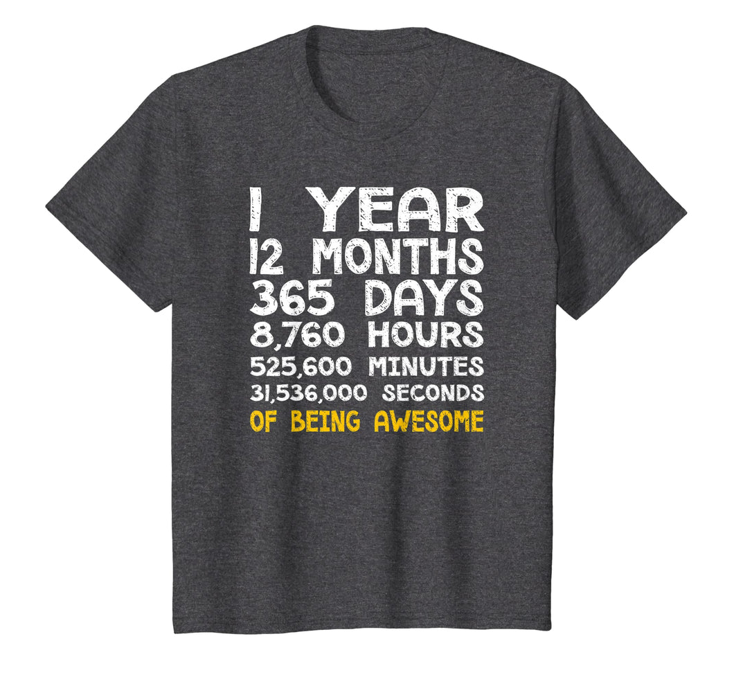 1st Birthday 1 Year Old Being Awesome Anniversary T-Shirt