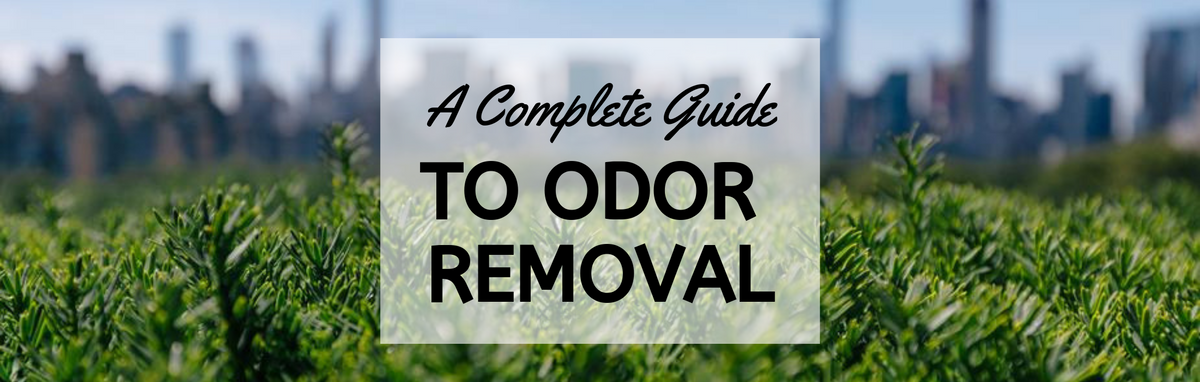 A Complete Guide to Odor Removal – A2Z Ozone