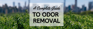 A Complete Guide to Odor Removal