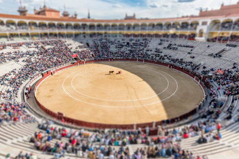 Tilt Shift Bullfighting II