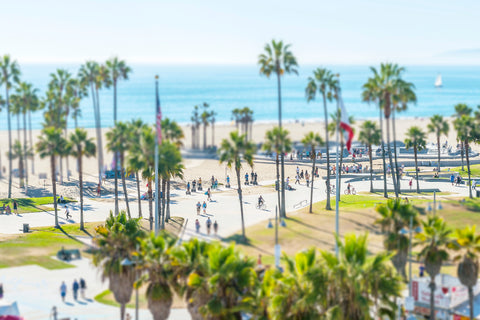 Tilt Shift Venice Beach II