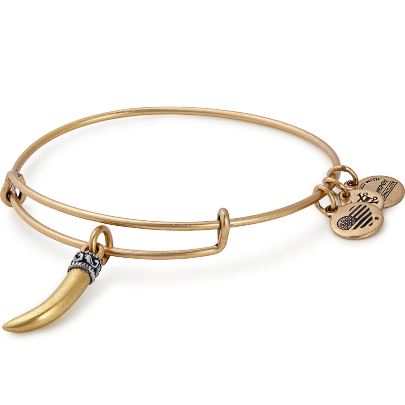 ALEX AND ANI- Horn Charm Bangle