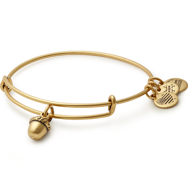 ALEX AND ANI- Unexpected Blessings Charm Bangle