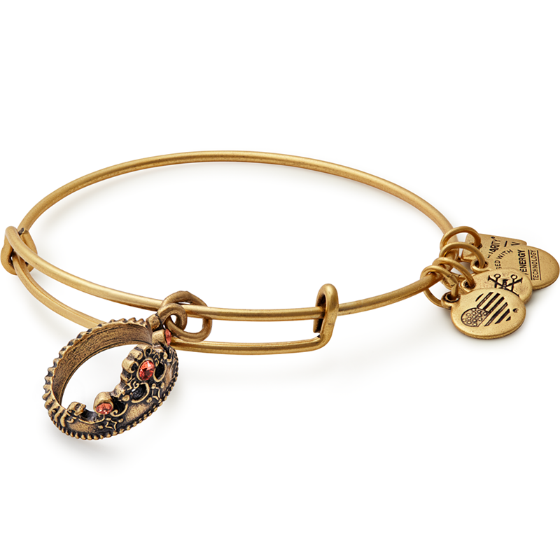 ALEX AND ANI- Queen's Crown Charm Bangle | benefiting Not For Sale