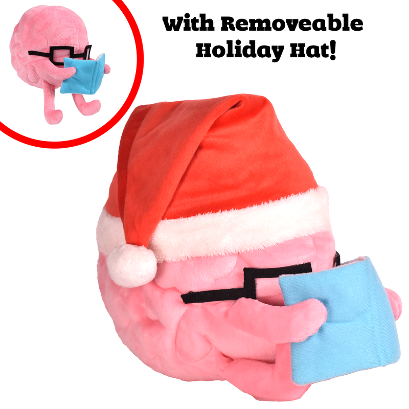 Holiday Edition Brain with Book Plushie with removable Santa hat