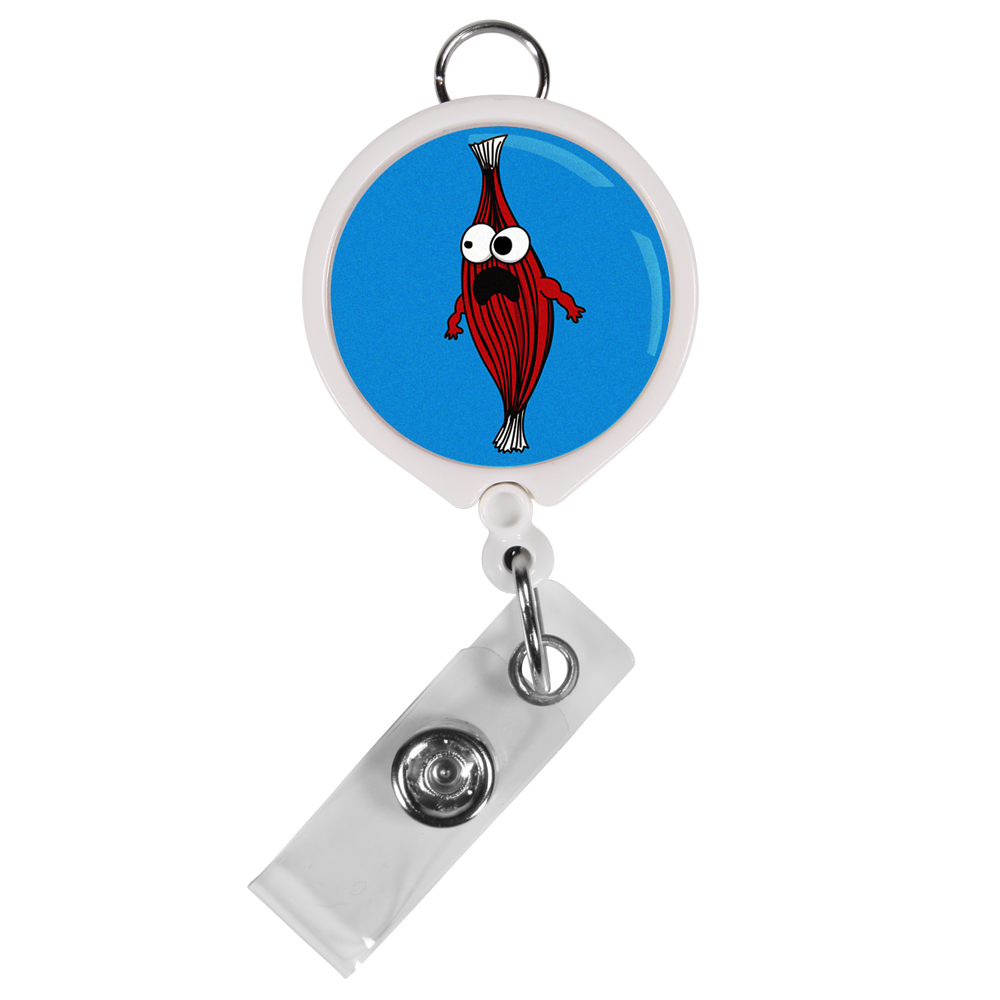 Skeletal Muscle ID Badge Reel