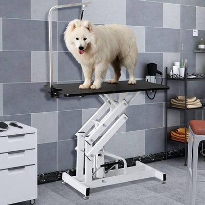 Professional Large Hydraulic Pet Grooming Table Z Lift Heavy Duty Bathing Trimming Station
