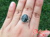 Seraphinite Oval Scrollwork Sterling Silver Ring US 7 SS-045