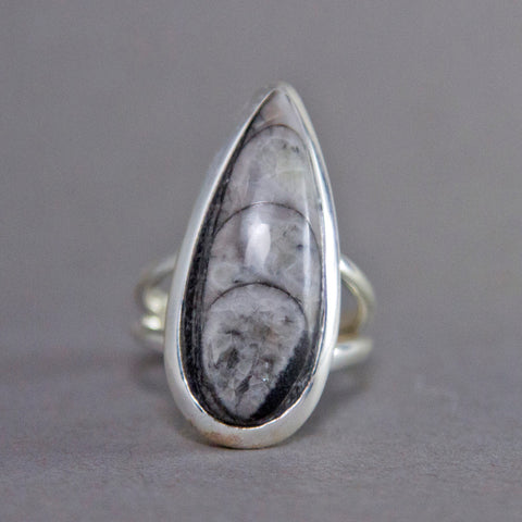 Orthoceras Fossil Teardrop Classic Sterling Silver Ring SS-008