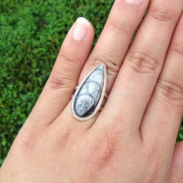 Orthoceras Fossil Teardrop Classic Sterling Silver Ring US 6 SS-008