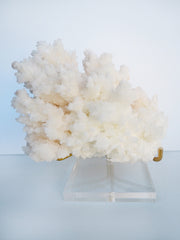 Aragonite Crystal X large