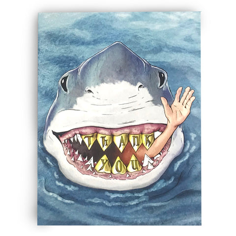 Shark Thank You Cards (All Occasion) - Box of 8