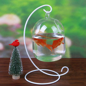 Mrosaa Glass Hanging Aquarium Fish Tank Bowl Flower Plant Vase Table Fish bowl Height 15cm tank for Small fish Pet Supplies
