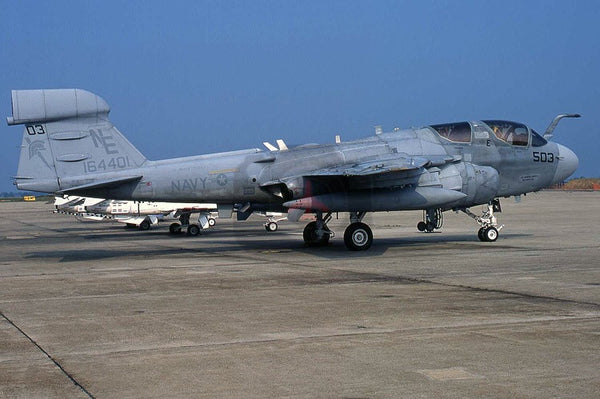 164401(NE503) Grumman EA-6B, USN(VAQ-131), Washington 2005