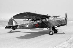 VF631 Auster AOP.6, British Army