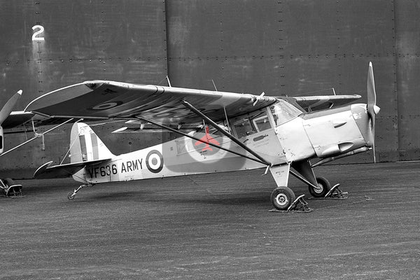 VF636 Auster AOP.6, British Army, Middle Wallop 1960