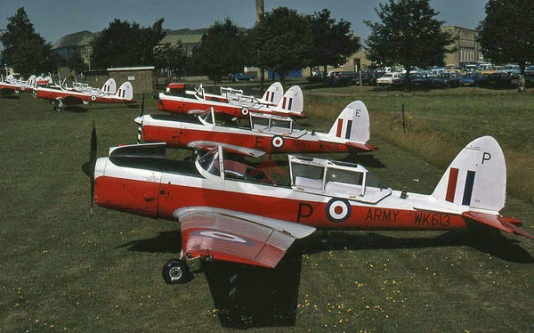 WK613(P) De Havilland Canada DHC-1 Chipmunk T.10, British Army, Middle Wallop, 1979