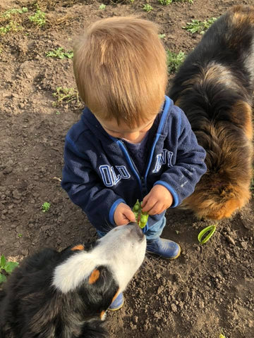 Saving Our Seeds for the Next Generation