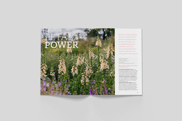 Bloom – Issue 8 - Print Matters!