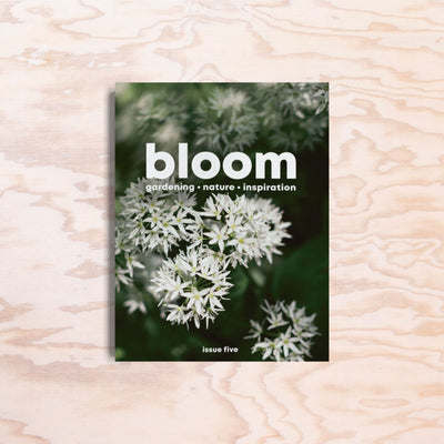 Bloom – Issue 5