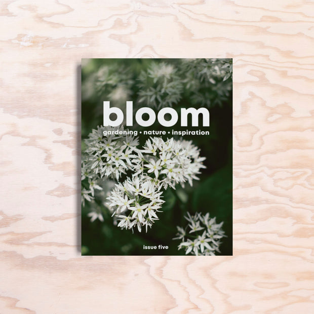 Bloom – Issue 5 - Print Matters!