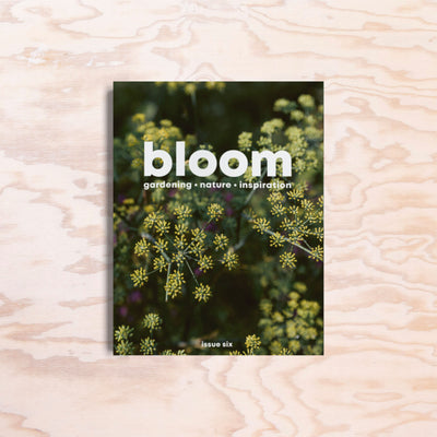 Bloom – Issue 6