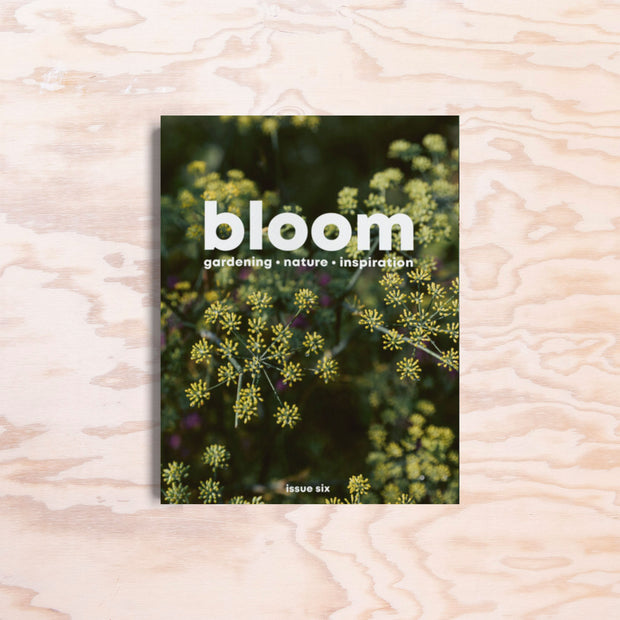 Bloom – Issue 6 - Print Matters!