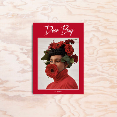 Dear Boy – Issue 5