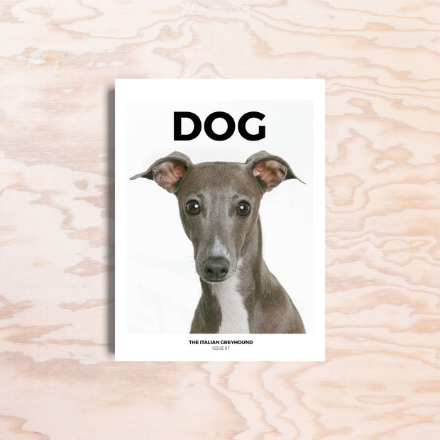 Dog – Issue 7 - Print Matters!