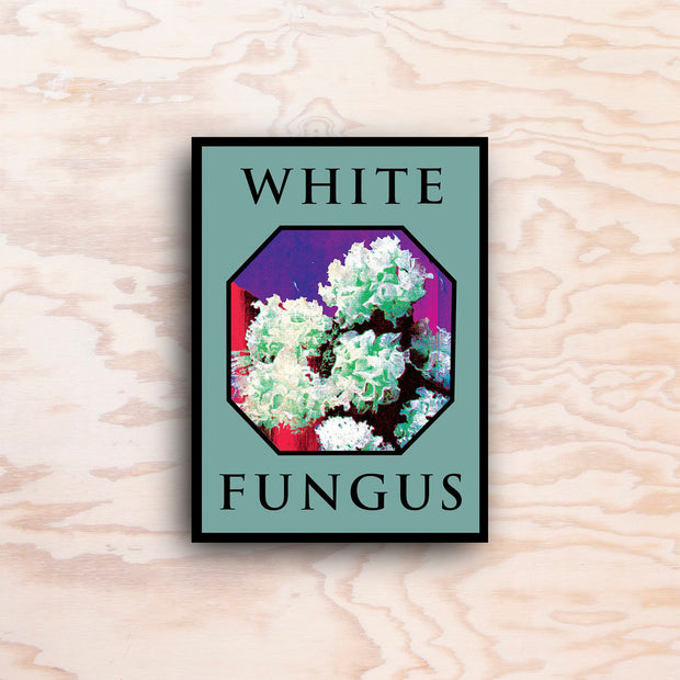 White Fungus – Issue 16 - Print Matters!