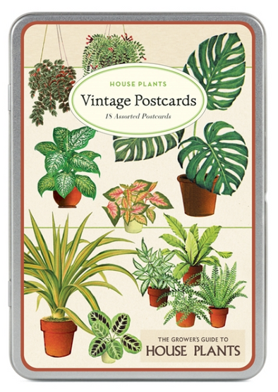 Vintage House Plants Postcards