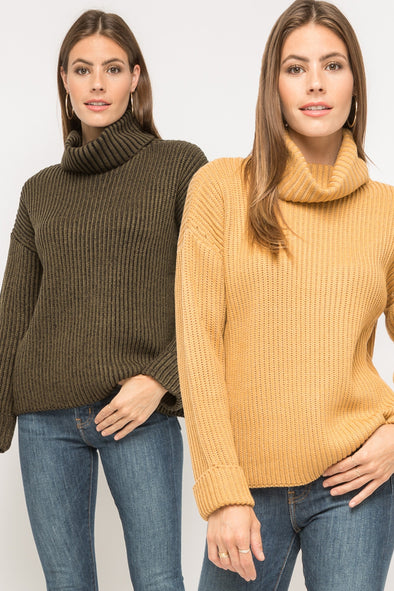 Newton Turtleneck Sweater